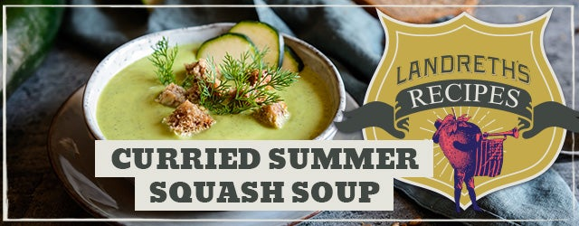 Curried Summer Squash Soup Recipe