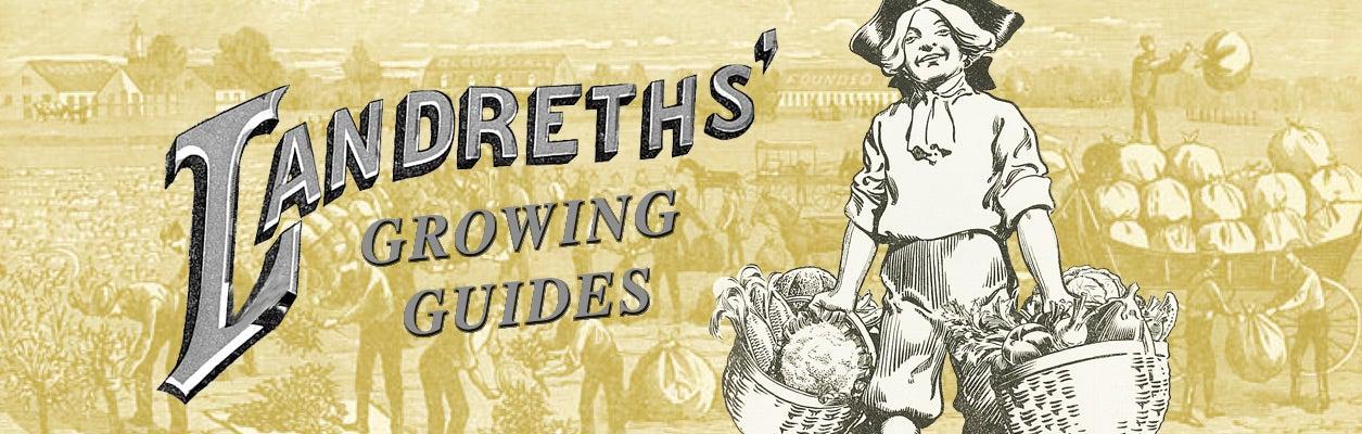 landreth growing guides